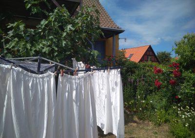 Bornholm Ronne ogród
