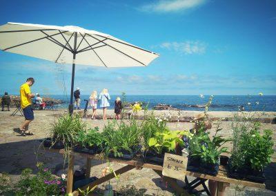 Bornholm Svaneke plaża