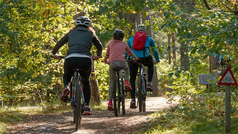 wyprawy rowerowe z dziećmi